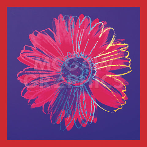 Daisy, c.1982 (blue & red) -  Andy Warhol - McGaw Graphics
