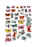Butterflies, 1955  (many/varied colors) -  Andy Warhol - McGaw Graphics