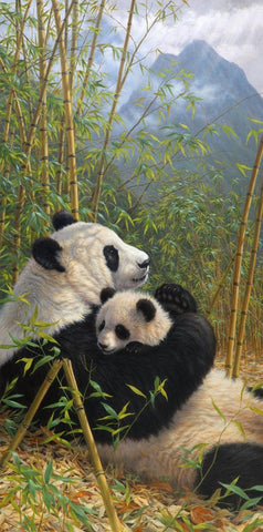 A New Dynasty - Giant Pandas-Beth Hoselton-McGaw Graphics