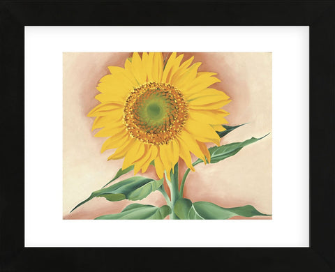 A Sunflower from Maggie, 1937 (Framed)-Georgia O'Keeffe-McGaw Graphics