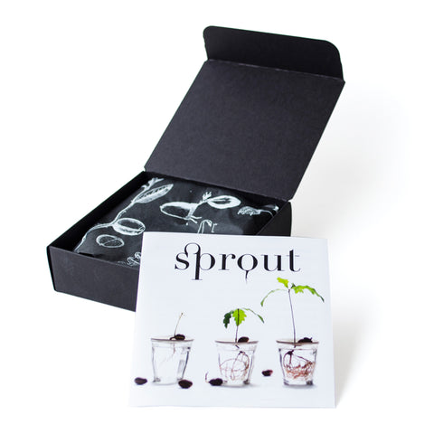 Sprout size L