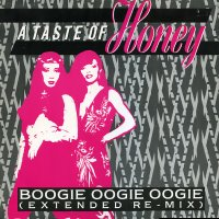 A TASTE OF HONEY - Boogie Oogie Oogie / We've Got The Groove