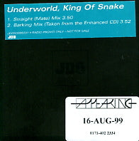 UNDERWORLD - King Of Snake