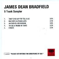 JAMES DEAN BRADFIELD - The Great Western - 5 Track Sampler