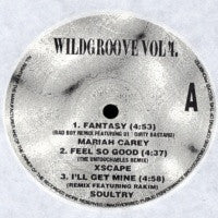 VARIOUS - Wildgroove Vol.4