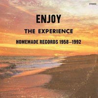 VARIOUS - Enjoy The Experience