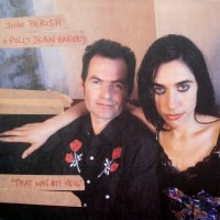 PJ HARVEY AND JOHN PARISH - That Was My Veil