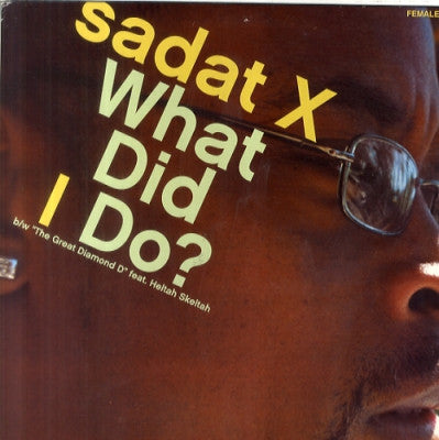 SADAT X (BRAND NUBIAN) - What Did I Do? / The Great Diamond D