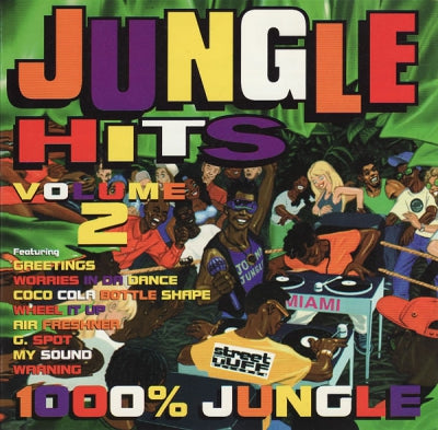VARIOUS ARTISTS - Jungle Hits Volume : 2