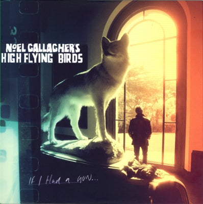 NOEL GALLAGHER'S HIGH FLYING BIRDS - If I Had A Gun...