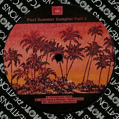 VARIOUS - Hot Summer Jams Sampler Part Two