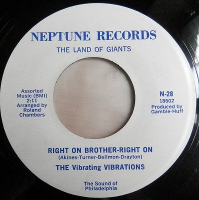 THE VIBRATING VIBRATIONS - Right On Brother-Right On / Surprise Party For Baby