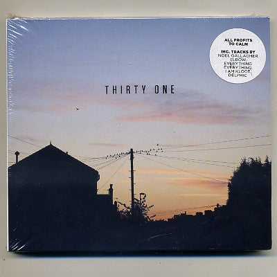 VARIOUS - Thirty One