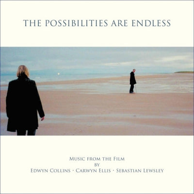 EDWYN COLLINS / CARWYN ELLIS / SEBASTIAN LEWSLEY - The Possibilities Are Endless