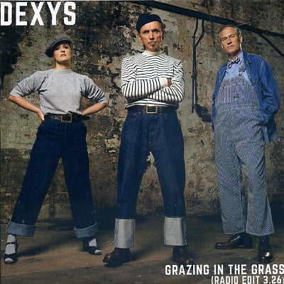 DEXYS - Grazing In The Grass