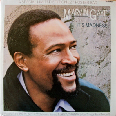 MARVIN GAYE - It's Madness