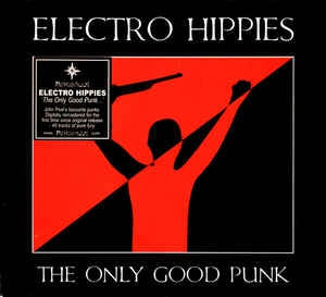 ELECTRO HIPPIES - The Only Good Punk
