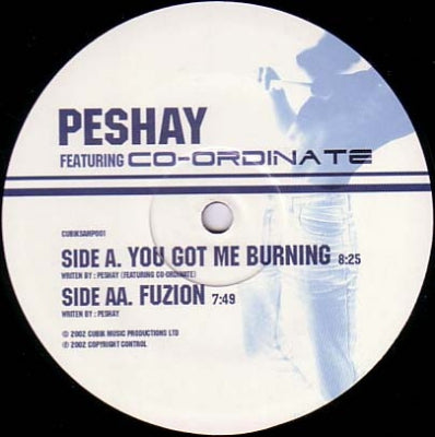 PESHAY FEATURING CO-ORDINATE - You Got Me Burning / Fuzion