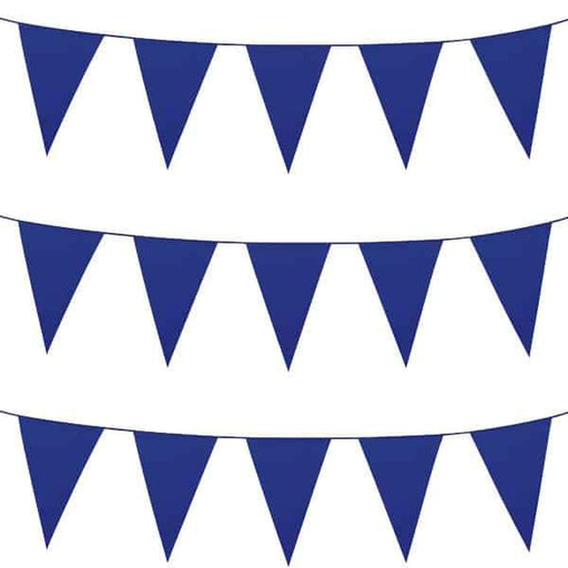 Blue Giant Pennant Bunting
