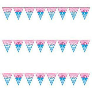 Gender Reveal Pennant Flag Bunting