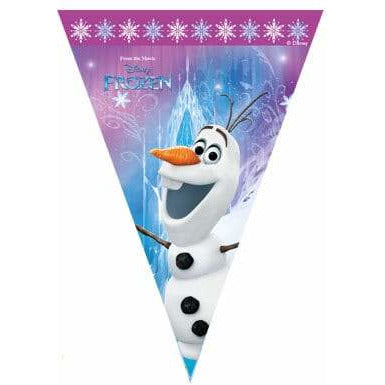 Frozen Triangle Party Flag Banner