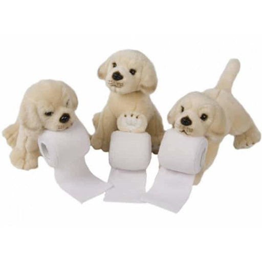 Labrador Puppies With Toilet Rolls x1