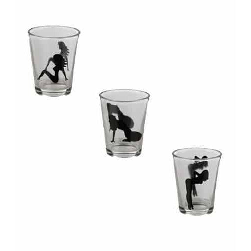 Sexy Ladies Shot Glasses x 5