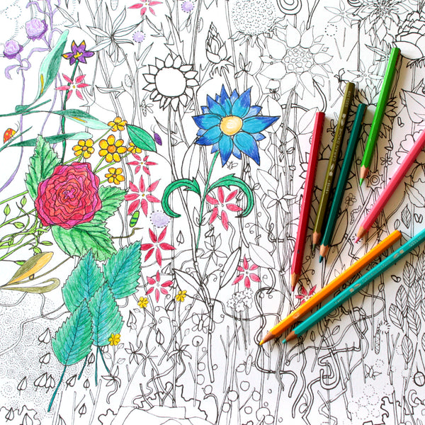 Flowers Colouring Poster