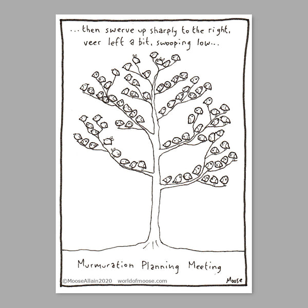 Murmuration Planning Meeting Cartoon