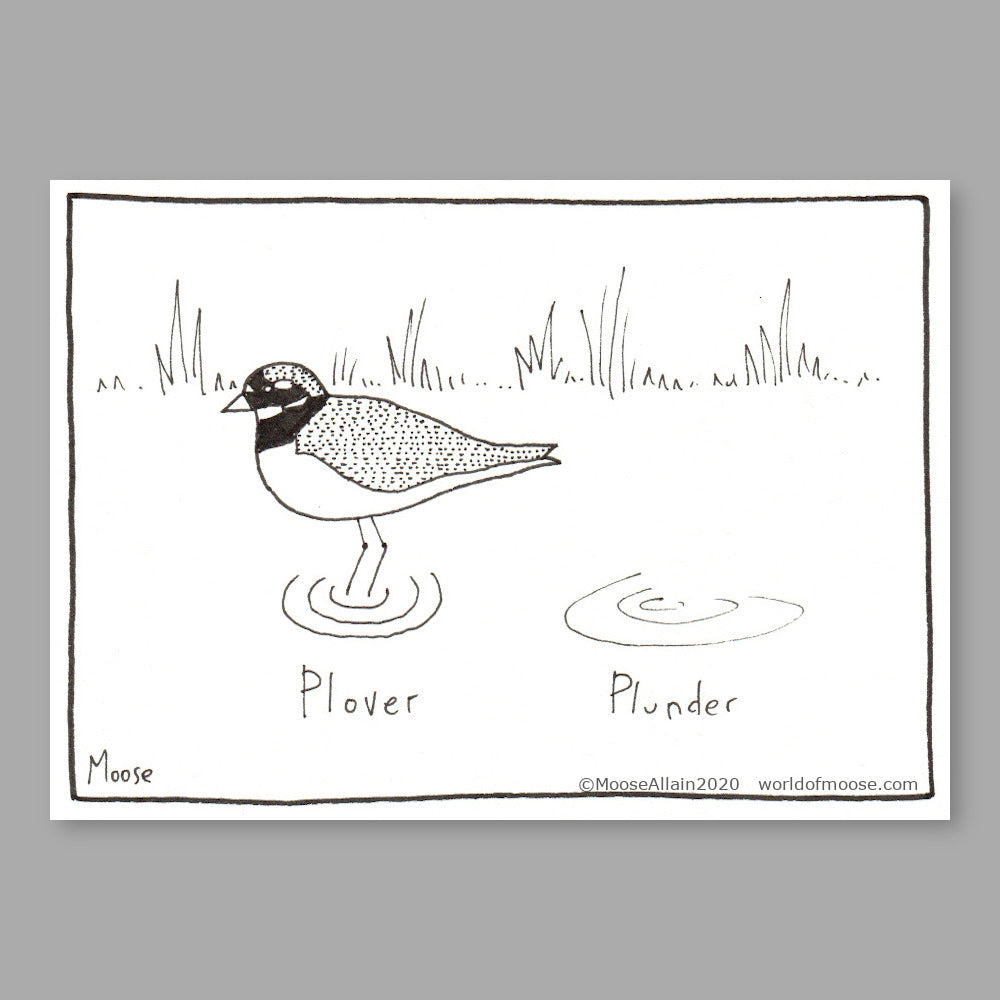 Plover Cartoon