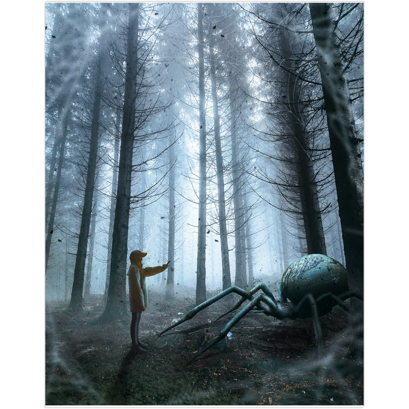 Spider In The Woods Fine Art Print