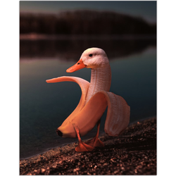 Banana Duck Fine Art Print