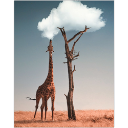Cloud Giraffe Fine Art Print