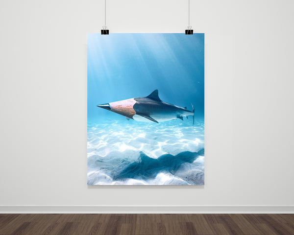 Pencil Shark Fine Art Print