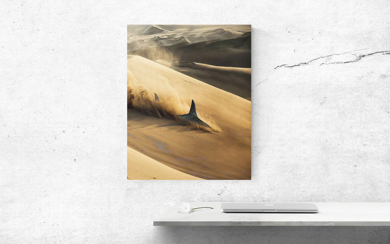 Sand Shark Canvas