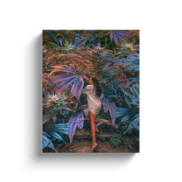 Canna Forest Canvas