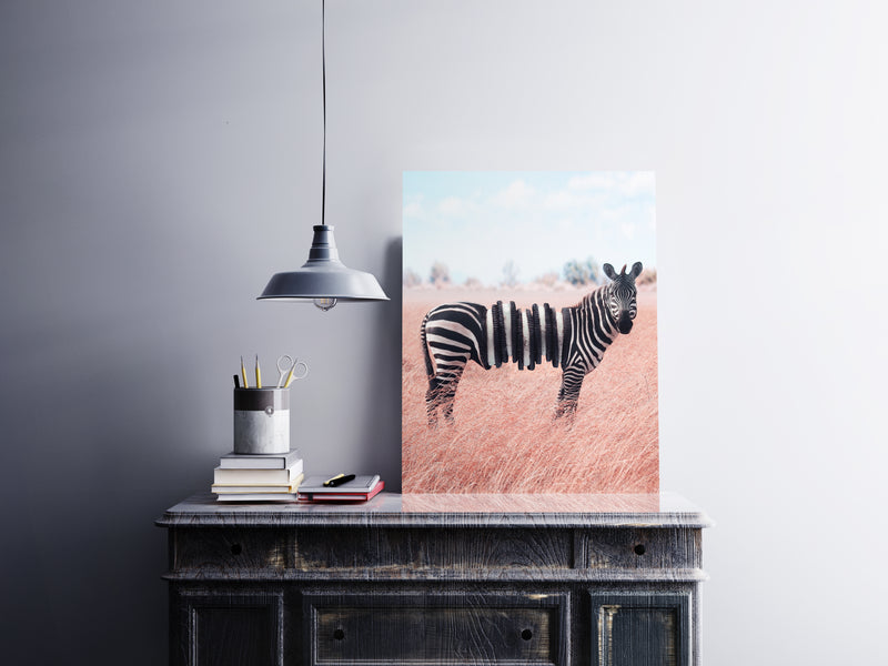 Zebra Oreo Canvas