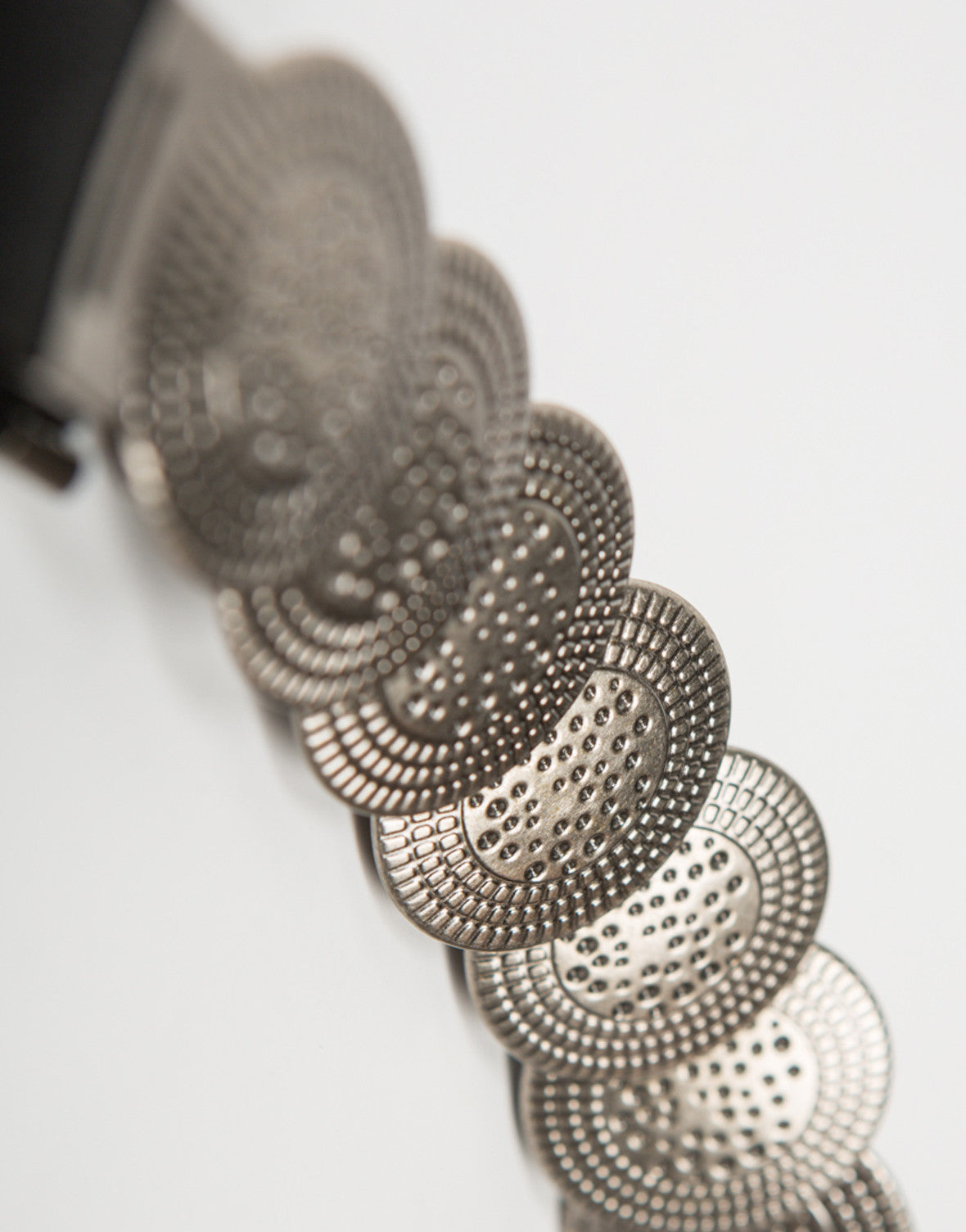 Detail of Coined Waist Belt