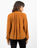 Back View of Sheer Woven Blouse