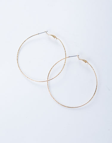 Shiny Hoop Earrings