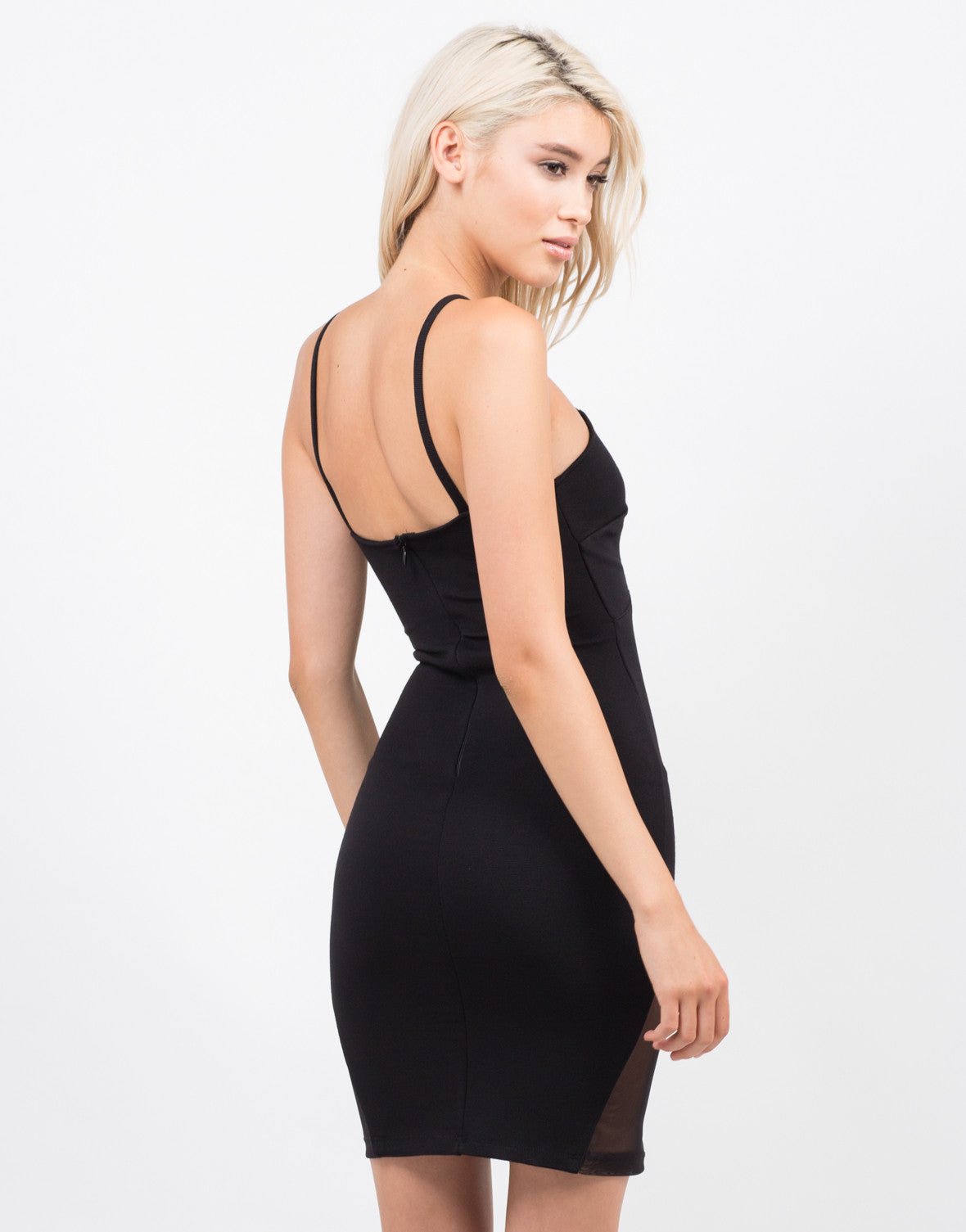 Back View of Total Mesh Bodycon Dress