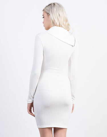 Back View of Zipped Turtleneck Dress