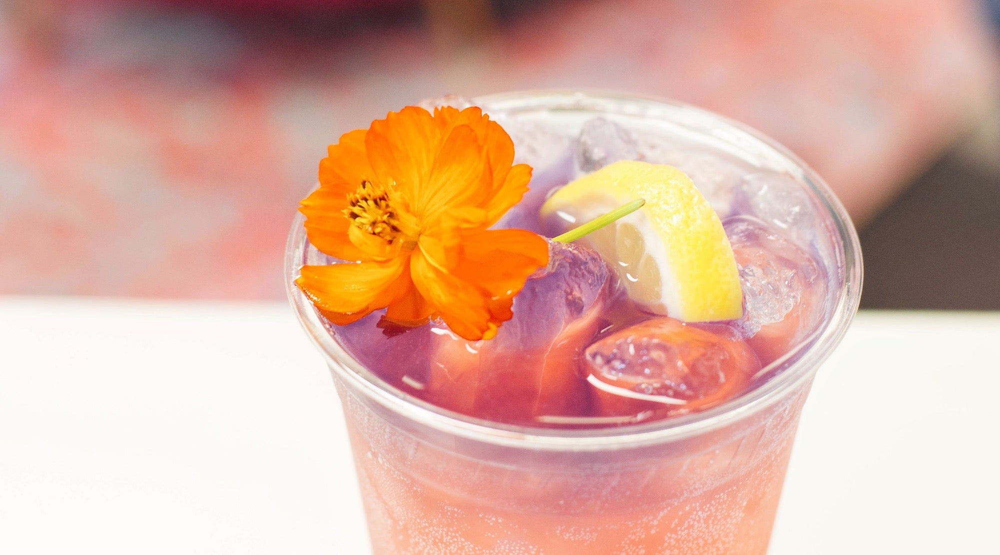 Sparkling Butterfly + Hibiscus Lemonade