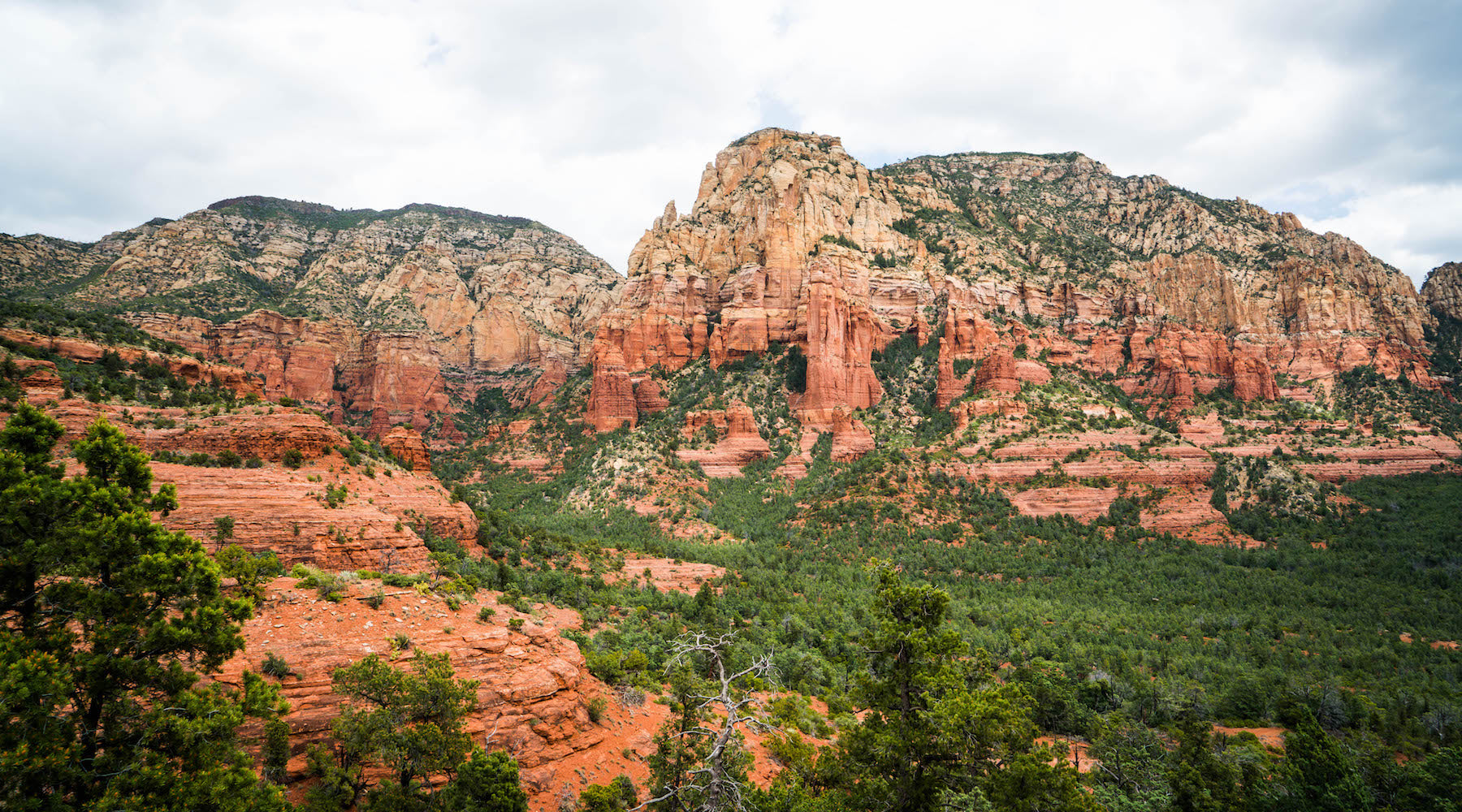 BRINGING SEDONA TO YOU!