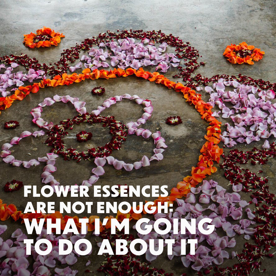 Flower Essences Are Not Enough: What I'm Going to Do About It