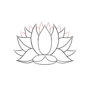 drawing a lotus flower LOTUSWEI flower essences