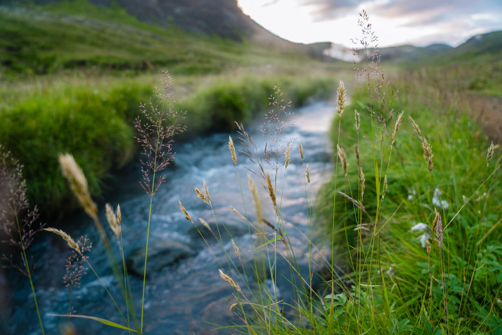 hot river Iceland LOTUSWEI flower essences