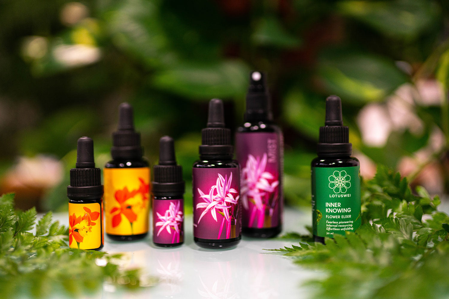lotuswei flower essence collection inner knowing inspired action gamechanger