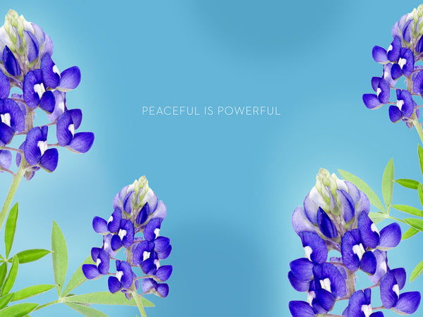 Arctic Lupine Tablet Wallpaper LOTUSWEI flower essences