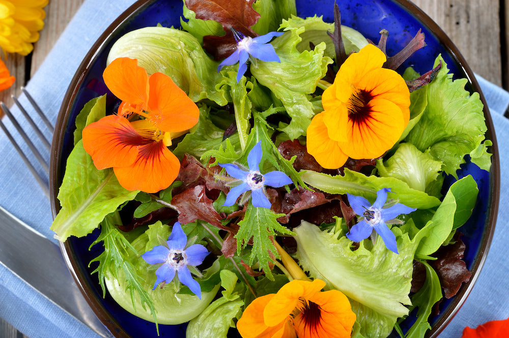 Nasturtium salad LOTUSWEI flower essences